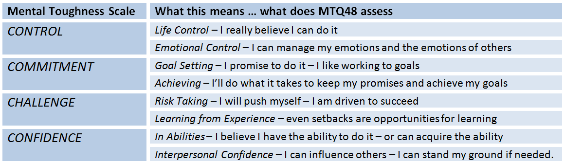 MTQ48 Assessment Scales